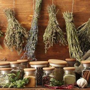 Erbe aromatiche, spezie e tisane